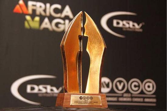 amvca2013_award