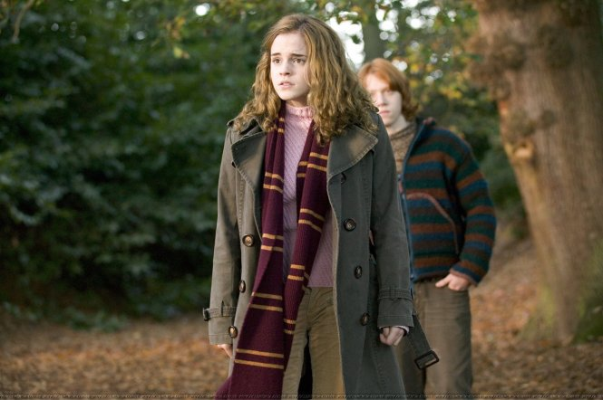 Hermione ESTJ | Harry Potter MBTI