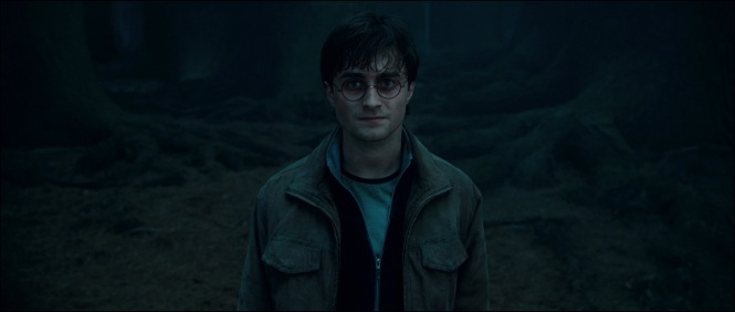 Harry-Potter-and-the-Deathly-Hallows-Trailer-harry-potter-and-lord-voldemort-13959605-1920-816