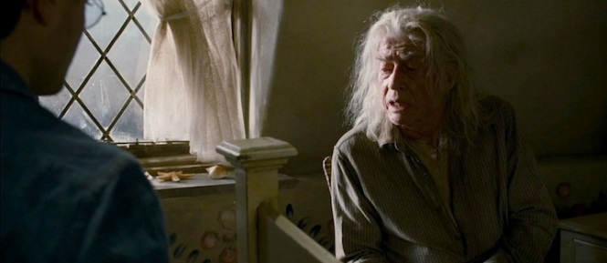 Mr._Ollivander_inside_the_Shell_Cottage